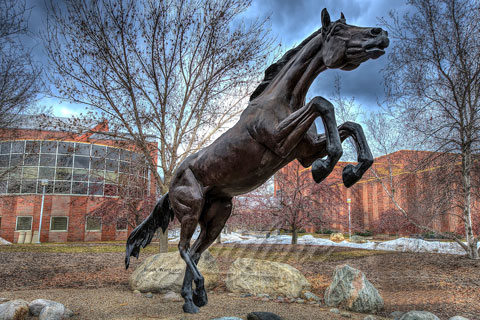 large bronze jumping horse statue for city decor